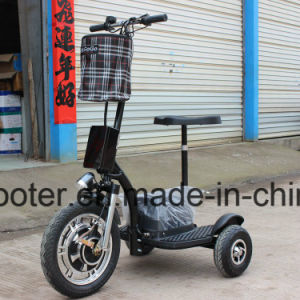 Hub Motor Electric Motorcycle 3-Wheel Electric Scooter Zappy Roadpet pictures & photos