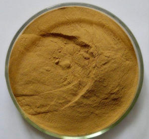 Organic Natural 10% Single Icariin Epimedium Extract Powder pictures & photos