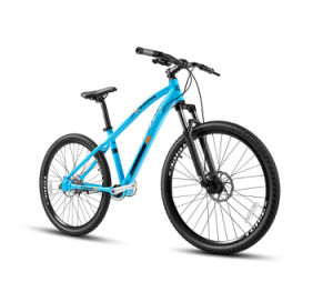Hummer Bicycle Price Bike Bicycle Full Suspension Mountain Bike of Drive Shaft Inner 3 Speed pictures & photos