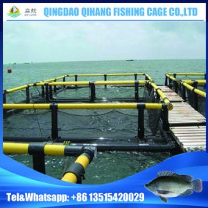 HDPE Floating Platform Fish Cage for Fish Breeding pictures & photos