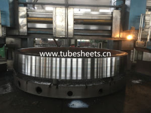 Large Size Flange /Stainless Steel Flange