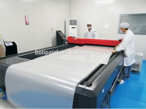 Smart Film Switchable Self-Adhesive Film pictures & photos