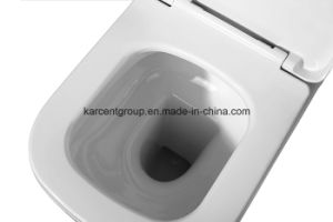 Two Piece Ceramic Toilet Ce Washdown Water Closet Wc T16020 pictures & photos