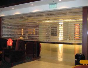 Transparent Polycarbonate Link/ Slat/ Panel/ Shutter pictures & photos