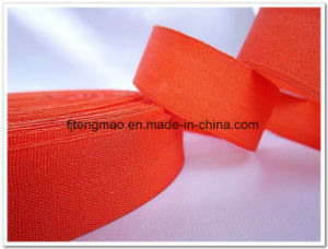 Nice Polyester Ribbon pictures & photos