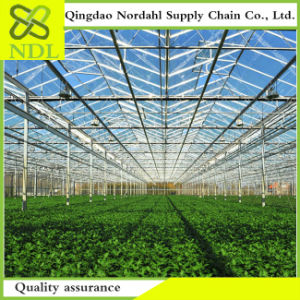Multi-PC-Sheet Agricultural Greenhouses Are Worth Having pictures & photos