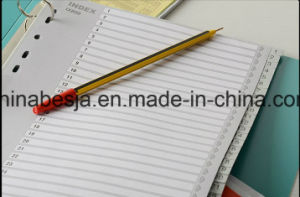 31 Pages Grey Color PP Index Divider, China Manufacturer of Index Divider, China Factory of PP Index Divider pictures & photos