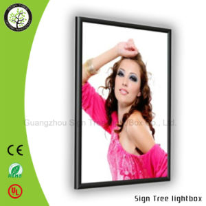 Aluminum Snap Frame Light Box for Outdoor pictures & photos