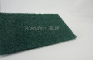 Daily Cleaning Household Cleaning Product Green Scouring Pad pictures & photos