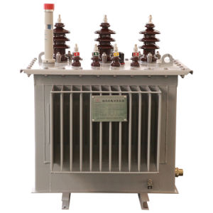S11 Type 100kVA 3 Phase High Voltage Oil Immersed Distribution Transformer pictures & photos