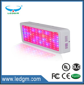 fashion -Professional Lighting-LED Grow Light-150W~160W/Gp-300W-Color Changeable pictures & photos