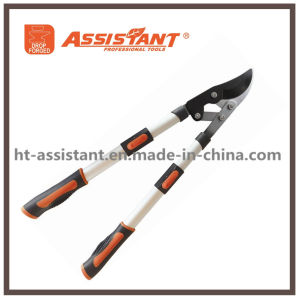 Razorsharp Heavy Duty Telescopic Ratchet Anvil Loppers pictures & photos
