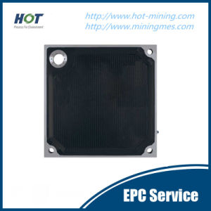 Oil Industrial Membrane Filter Plate pictures & photos