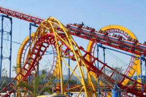 Theme Park Equipment Roller Coaster pictures & photos