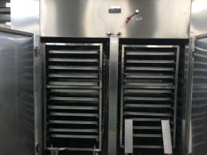 CT-C-II Stainless Steel Hot Air Circulating Drying Oven pictures & photos