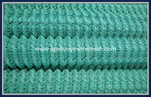 PVC Galvanized Welded Wire Mesh Chain Link Fence for Playground pictures & photos