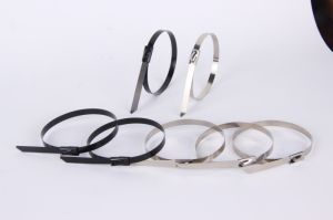 100PCS 4.6mmx300mm Self-Locking Stainless Steel Zip Cable Tie Lock Tie Wrap High Quality pictures & photos