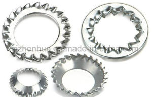 Serrated Lock Washer (DIN6798A&J&V) (Factory) pictures & photos