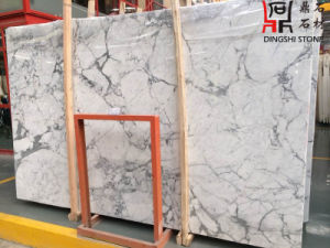 Staturio White Marble Slab for Wall Tiles/Home Decoration