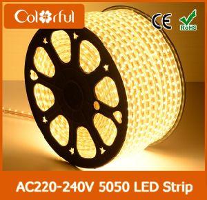 Hot Sale 60LEDs/M AC220V SMD5050 RGB Addressable LED Strip pictures & photos