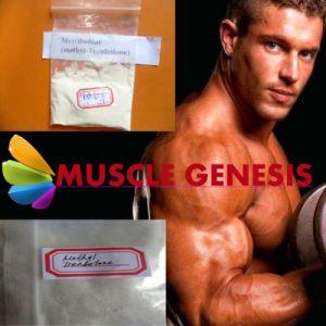 Medicine Grade Beginner Muscle Building Steroids Powder Methyltrienolone 965-93-5 pictures & photos
