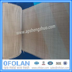 (AG>99.99%) Hole Size  0.5mm (30mesh) Battery Silver Wire Mesh  100mm*100mm Stock Supply  pictures & photos