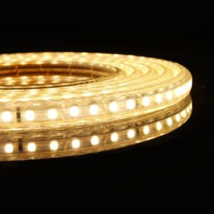 120LEDs SMD3528 Waterproof Outdoor LED Strip Light pictures & photos
