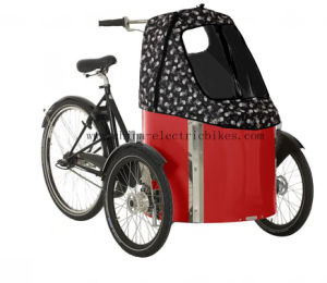Cargo Bikes for Families with The Front and Rear Disc Brakes (DT-019-D) pictures & photos