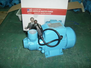 Qb60 1/2 HP Peripheral Water Electric Pump for House pictures & photos
