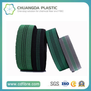 Eco-Friendly PP Elastic Webbing Used in Safety Belts pictures & photos