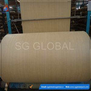 Polypropylene Circular Raffia Fabric in Roll pictures & photos