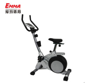 Home Use Fitness Magnetic Bike (M8003) pictures & photos