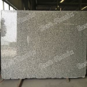 Natural Polished Green Granite Slab pictures & photos