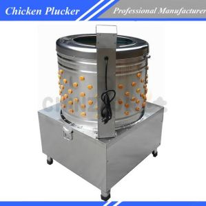 Big Size Commercial Automatic Equipment Poultry Feather Plucker Machine Chz-N80 pictures & photos