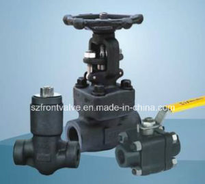 Forged Steel Threaded or Sw Y Type Check Valves pictures & photos