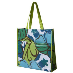 China Manufacturers 130g Full Color Printed PP Woven Bag (LJ-353)