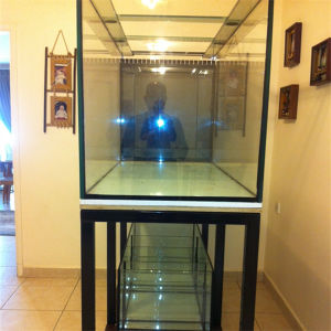 Decorative Ultra Clear Glass Fish Tank pictures & photos
