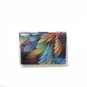 Quality Fashion Handbag Lady Box Clutch Bag Designer Evening Bag pictures & photos