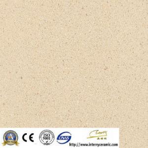600X600 Porcelain Rustic Tiles Granite (IDM001) pictures & photos