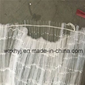 "0.80mm*5""*50md*100m Nylon Monofilament Fishing Net pictures & photos"