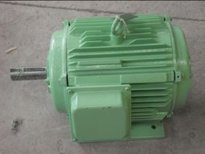 1kw with 200rpm Horizontal Permanent Magnet Generator/Wind Generator pictures & photos