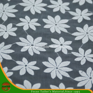 Garment Accessories Woven Cotton Fabric Lace (HX001) pictures & photos