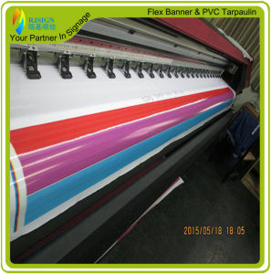 PVC Flex Banner for Printing pictures & photos