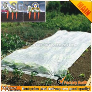 Supply Eco-Friendly Biodegradable Agricultural Covers Fabric pictures & photos
