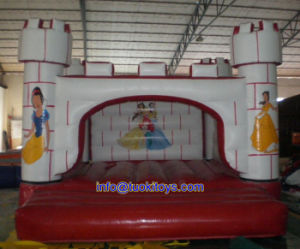 Newest Design Inflatable Bouncer for Indoor or Outdoor Use (A176) pictures & photos