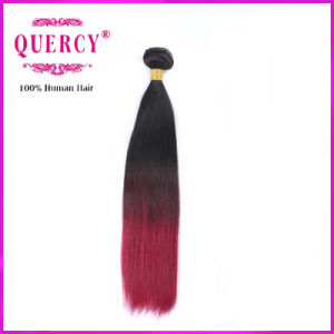 Colord Hair Body Wave Ombre Bundles 100% Remy Human Hair Extension pictures & photos