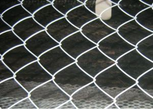 Chain Link Fencing / Chain Link Netting/PVC Coated Safety Chain Link Fence Yaqi Supply pictures & photos