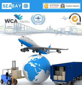 Professinal Air Cargo Freight From China to Helsinki pictures & photos