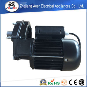 750W AC Single Phase Induction Electric Geared Motor Torque Motor Direct Drive From Concrete Mixer and Cement Mixer pictures & photos