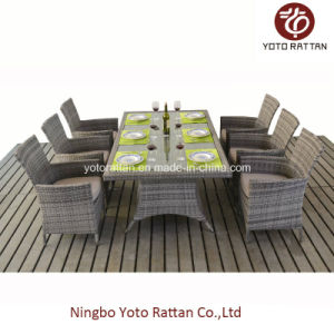 Outdoor Rattan Dining Set with Steel Frame (1412) pictures & photos